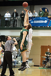 08 March 2014:  Referee tosses the tip off for Garrett Thorn and Mike Marietti during an NCAA mens division 3 2nd Round Playoff basketball game between the St Norbert Green Knights and the Illinois Wesleyan Titans in Shirk Center, Bloomington IL