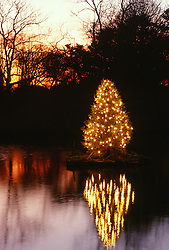 Lighted Christmas tree on a pond at sunset  in Southampton, NY