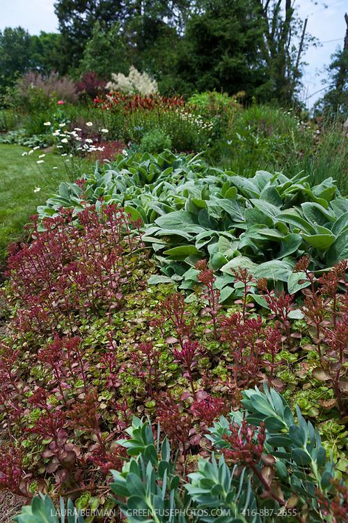 Port Hope Garden Tour 2013: Jane Currelly's garden