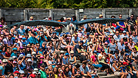 Considere comme l'un des plus importants parcs ornithologiques en Europe, le Parc des Oiseaux presente une collection d'oiseaux exceptionnelle de plus de 3000 individus, representant pres de 300 especes originaires de tous les continents.<br /> Exclusivites: Le spectacle d'oiseaux en vol, tous les jours, est un veritable festival de couleur