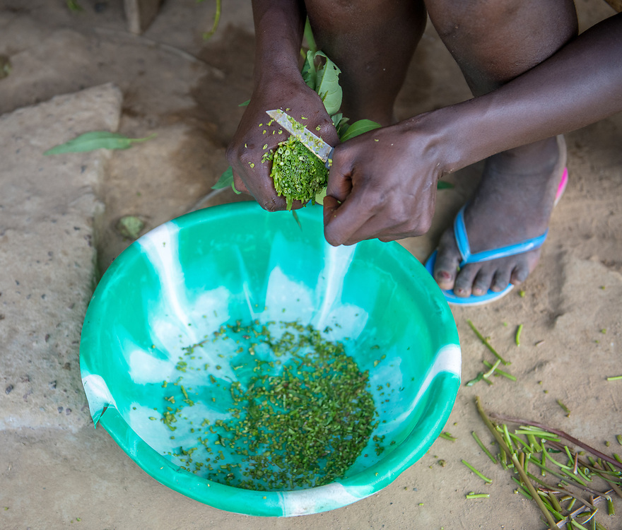Greens are chopped into a bowl in preparation for a meal in Ganta, Liberia