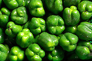 Fresh Green Peppers group, stacked side by side in a farmers market.