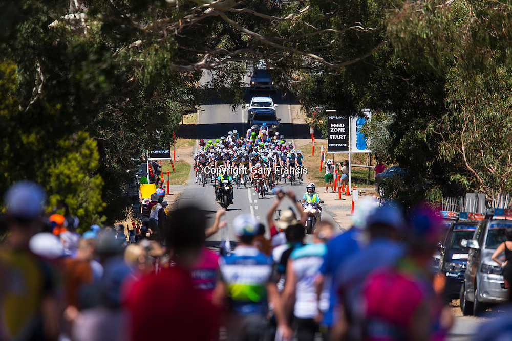 The pelaton reach the feed zone at the Tour Down Under, Stage 2 Mount Barker to Rostrevor, Australia on the 23 of January 2013 ( Credit Image: © Gary Francis / ZUMA WIRE SERVICE )