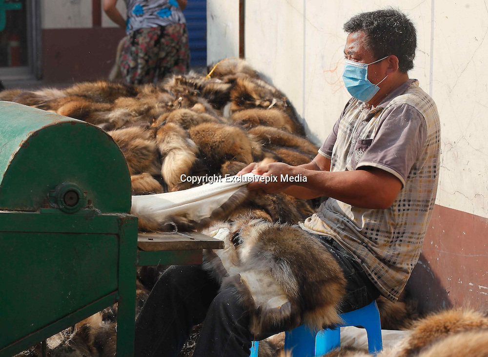 JIAXING, CHINA - JULY 14: (CHINA OUT) <br /> <br /> The Biggest Fur Market In China<br /> <br /> Workers lay fur products on the ground to be aired at Chongfu Town on July 14, 2015 in Jiaxing, Zhejiang province of China. The 100-square-kilometre township, which houses over 100,000 residents, is known as the biggest fur designing, researching, producing and exporting center in China. The township is the home of over 1,400 fur companies, according to its government website.<br /> ©Exclusivepix Media