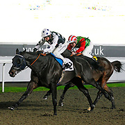 Arch Villian and Jim Crowley winning the 7.00 race