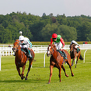 Lingfield 7th June