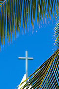 Picture in Waikiki of the cross on top of St. Augustine Church seen through palm fronds.