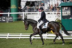 Dibowski Andreas, GER, FRH Corrida<br /> World Championship Young Eventing Horses<br /> Mondial du Lion - Le Lion d'Angers 2016<br /> © Hippo Foto - Dirk Caremans<br /> 21/10/2016