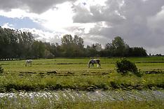 Mije, Nieuwkoop, Zuid Holland,  Netherlands