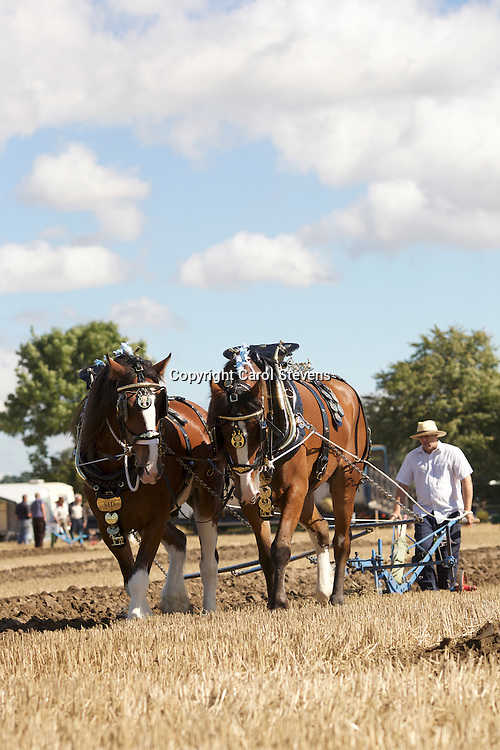 National Horse Ploughing Competition and Demonstrations 2016<br /> Jim Elliott