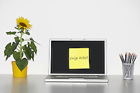 Sunflower plant on desk and sticky notepaper on laptop screen with German text saying Do some work