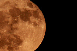 18 June 2008: Moon in full phase Image has been cropped and the exposure adjusted.