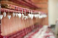 In the workshop of traditional gingerbread maker Gordana Mahmet Habzin, Marija Bistrica, Croatia. The traditional gingerbread craft of northern Croatia is inscribed on the UNESCO list of Intangible Cultural Heritage © Rudolf Abraham