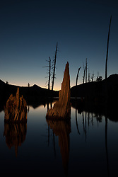 """Lake Aloha Sunset 8"" - Photograph of dead trees and stumps in Lake Aloha at sunset in the Tahoe Desolation Wilderness. A flashlight was used to ""light paint"" the stumps during a long exposure."
