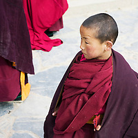 XIAHE, APRIL 5, 2012 : a novice monk in one of the temples of labrang monastery after a prayer.