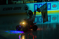 KELOWNA, CANADA - MARCH 14: Rocky Raccoon, the mascot of the Kelowna Rockets enters the ice against the Prince George Cougars on March 14, 2018 at Prospera Place in Kelowna, British Columbia, Canada.  (Photo by Marissa Baecker/Shoot the Breeze)  *** Local Caption ***