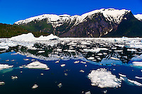 Ice floes and icebergs in LeConte Bay en route from Petersburg to LeConte Glacier, southeast Alaska USA