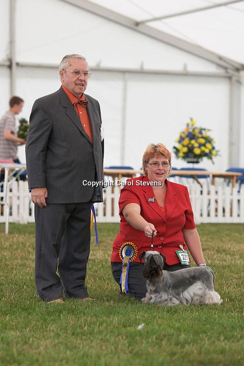 Janski Celtic Ceska<br /> Mrs W Tobijanski<br /> Cesky Terrier