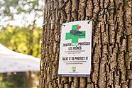 VDB - Tree Canada - September 2017