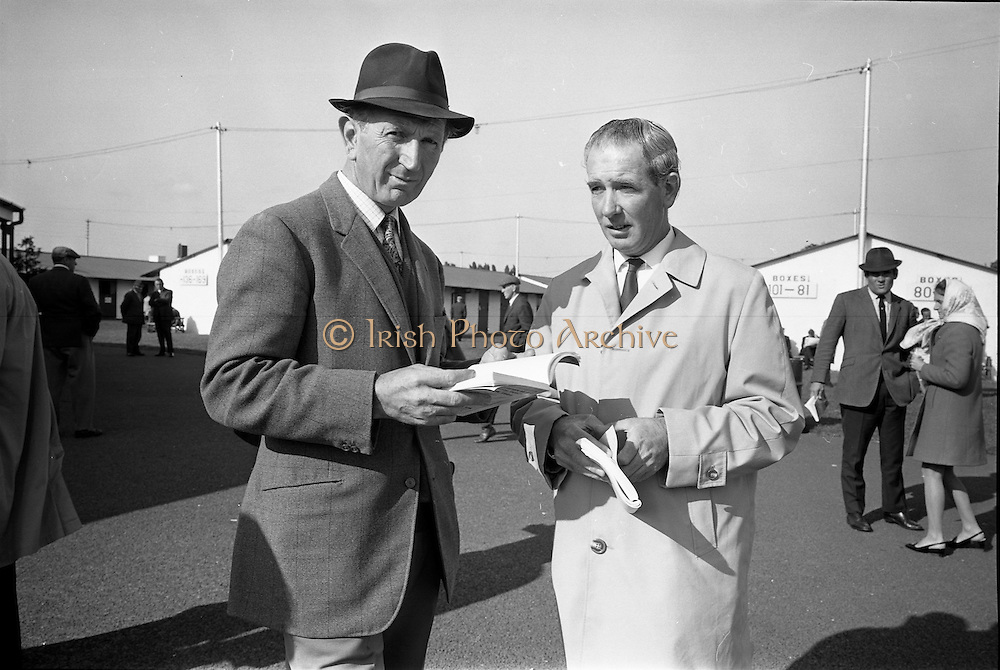 16/09/1968<br /> 09/16/1968<br /> 16 September 1968<br /> Goffs September Bloodstock Sales at the RDS, Ballsbridge, Dublin. Pictured at the sales were Mr Dermot O'Brien, Trainer, castle, Co. Tipperary and Mr P. Norris, trainer, Curragh, Co. Kildare.
