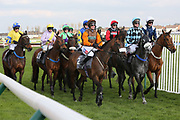 The runners at the start for the The Class 2 Smart Money's On Coral Seafield Trophy Mares Handicap Hurdle over 3m (NHMOPS Bonus Race) (£30,000)  during the Scottish Grand National, Ladies day at Ayr Racecourse, Ayr, Scotland on 12 April 2019.