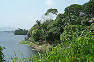 Home to an amazing variety of wildlife, including rarely-seen bird species, Lake Bayano is one of Panama's most fantastic treasures, but it is also one of Panama's least known areas: eastern Panama province.