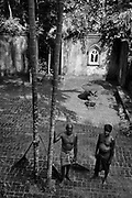LUNUGANGA. <br />Gardeners and ekel brooms
