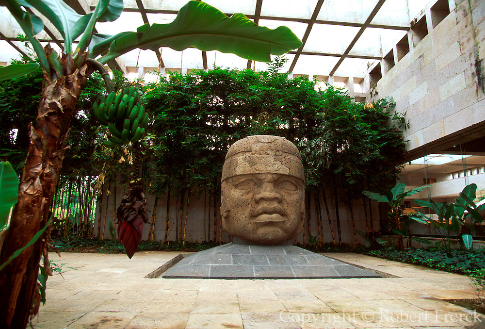 MEXICO, OLMEC CULTURE Jalapa Museum with Olmec head