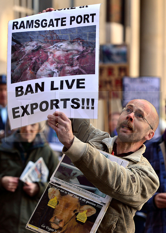 © Licensed to London News Pictures. 12/10/2012. Westminster, UK A man holding a poster calling for a ban on live exports stands outside the DEFRA (Department for Environment, Food and Rural Affairs) building.  A Rally on live animal transport held by Compassion in World Farming (CIWF) and RSPCA outside DEFRA today 12 October 2012. The groups handed in a petition and report urging ministers not to issue any more licences for live transport until legislation on journey times and port facilities is enforced. Photo credit : Stephen Simpson/LNP