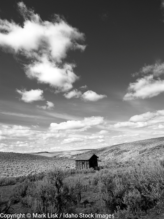 The Harvey cabin sits above the spings that lead into Cottonwood Canyon. One of a handfull of old homesteads that remain in the Owyhee Canyonlands.