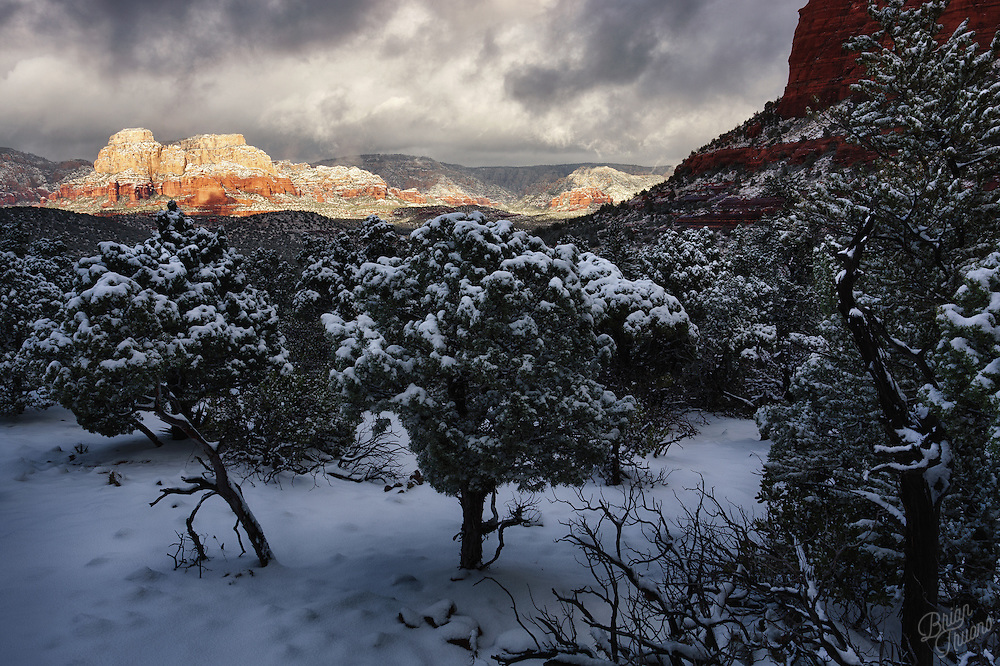 It's always a treat to see the Sedona red rocks coated in a fresh blanket of snow. A place reknowned for it's hot, arid, desert-like climate with hardy cacti, agave and bristlecone pines; the addition of frozen precipitation can make for a curious view.