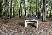 Business man sitting at desk in forest