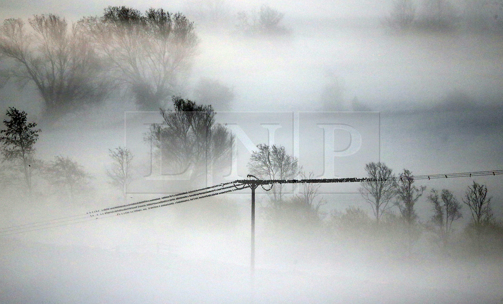 © Licensed to London News Pictures. 17/11/2017. Butleigh Moor, UK.  Birds sit on a telephone wire as mist swathes Butleigh Moor at sunrise on a frosty morning. Photo credit: Jason Bryant/LNP