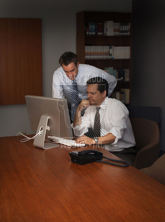 two professional men working at the computer