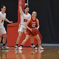 Women's Basketball: Benedictine University (Illinois) Eagles vs. Edgewood College Eagles at Benedictine University in Lisle, IL. Credit: Dean Reid, d3photography.com