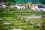 Gardens and village, Chateau de Villandry, Villandry, Loire Valley, France
