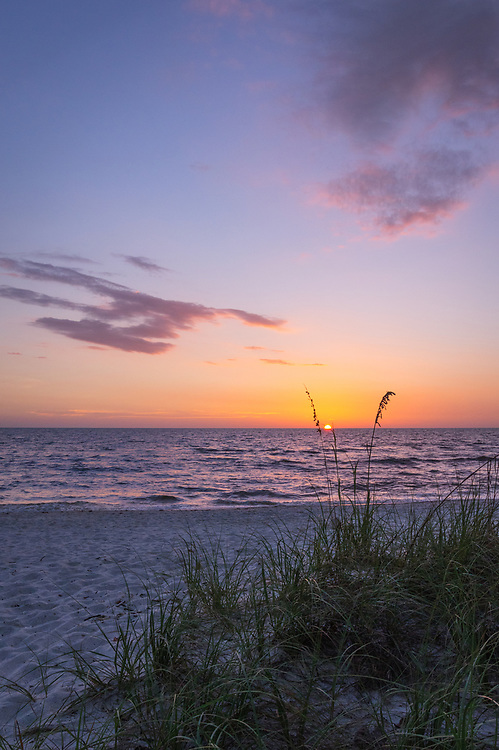 The sun sets over the Gulf of Mexico from Delnor-Wiggins Pass State Park in Naples, Florida beyond the row of sea oats and the white sands beach.
