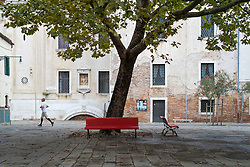 Early morning jogger passes a tree in Dosoduro, Venice, Italy.<br />