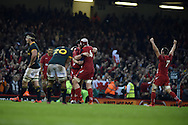 The final whistle goes and Wales players celebrate their win. Dove Men series 2014, autumn international rugby match, Wales v South Africa at the Millennium stadium in Cardiff, South Wales on Saturday 29th November 2014<br /> pic by Andrew Orchard, Andrew Orchard sports photography.