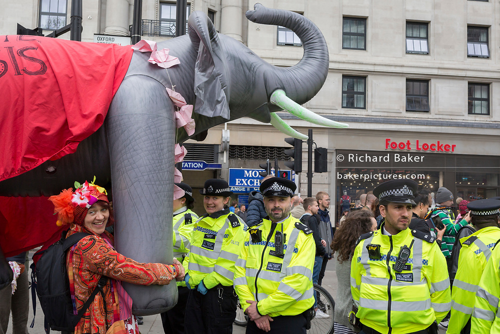 On the 10th consecutive day of protests around London by the climate change campaign Extinction Rebellion, a large inflatable elephant allows humour among protesters and police officers, on 24th April 2019, at Marble Arch, London England.