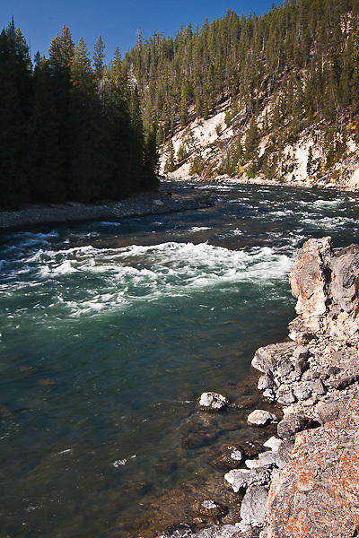 The Yellowstone River above the Lower Falls.  Yellowstone National Park, Wyoming, USA.