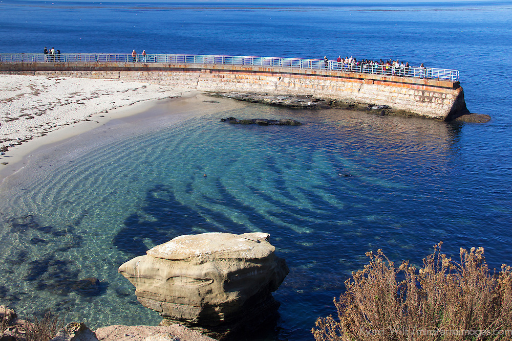 USA, California, San Diego. Children's Pool, La Jolla.