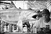 Man and hanging shark, key Largo, Florida, 2014.