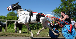 © Licensed to London News Pictures. <br /> 06/06/2014. <br /> <br /> Appleby, Cumbria, England<br /> <br /> A horse and trap is driven along the road as gypsies and travellers gather during the annual horse fair on 6 June, 2014 in Appleby, Cumbria. The event remains one of the largest and oldest events in Europe and gives the opportunity for travelling communities to meet friends, celebrate their music, folklore and to buy and sell horses.<br /> <br /> The event has existed under the protection of a charter granted by King James II in 1685 and it remains the most important event in the gypsy and traveller calendar.<br /> <br /> Photo credit : Ian Forsyth/LNP