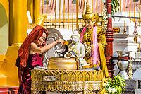 YANGON, MYANMAR - DECEMBER 16, 2016 : buddhist monk watering buddha statue Shwedagon Pagoda Yangon (Rangoon) in Myanmar (Burma)