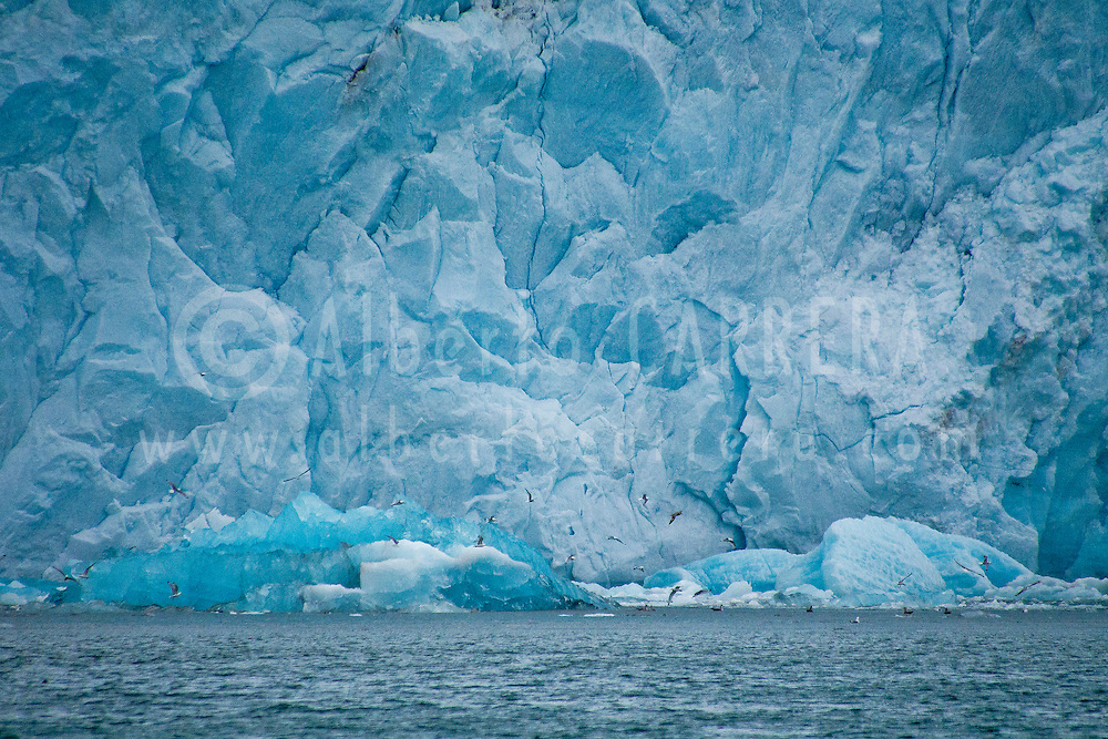 Alberto Carrera, Arctic Lands, Deep Blue Glacier, Signehamna Harbor, Nordvest-Spitsbergen National Park, Krossfjord, Arctic, Spitsbergen, Svalbard, Norway, Europe