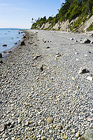 The rocky beach and shore at Point Whitehorn Marine Reserve in Whatcom County, Washington, USA.