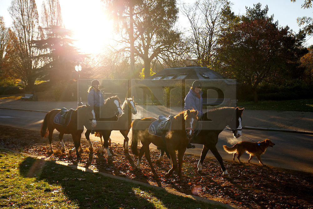 © Licensed to London News Pictures. 29/11/2016. London, UK. People ride horses in Hyde Park, London on a frosty morning as temperatures in the capital drop as low as -3C on Tuesday, 29 November 2016. Photo credit: Tolga Akmen/LNP