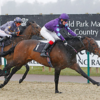 Shirataki and P Millman winning the 2.20 race