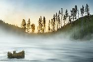 Gibbon River at sunrise, Yellowstone National Park, Wyoming/Montana